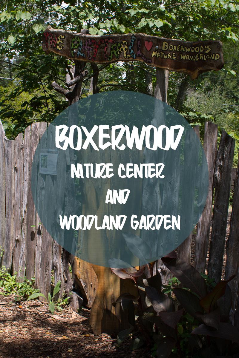Boxerwood-Intro