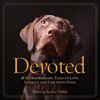 Devoted-cover-image-400x400