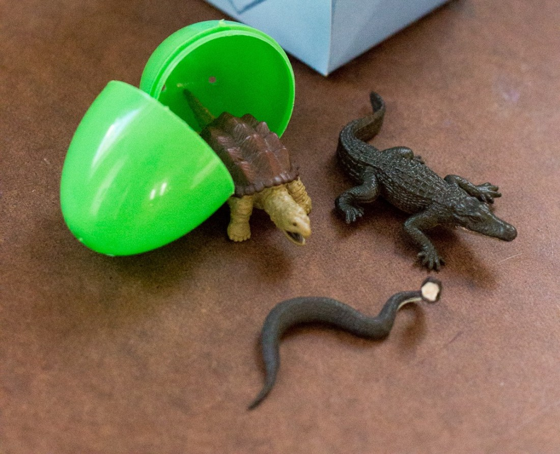 Reptile Review