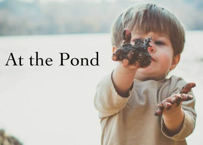 At the Pond: Week Two