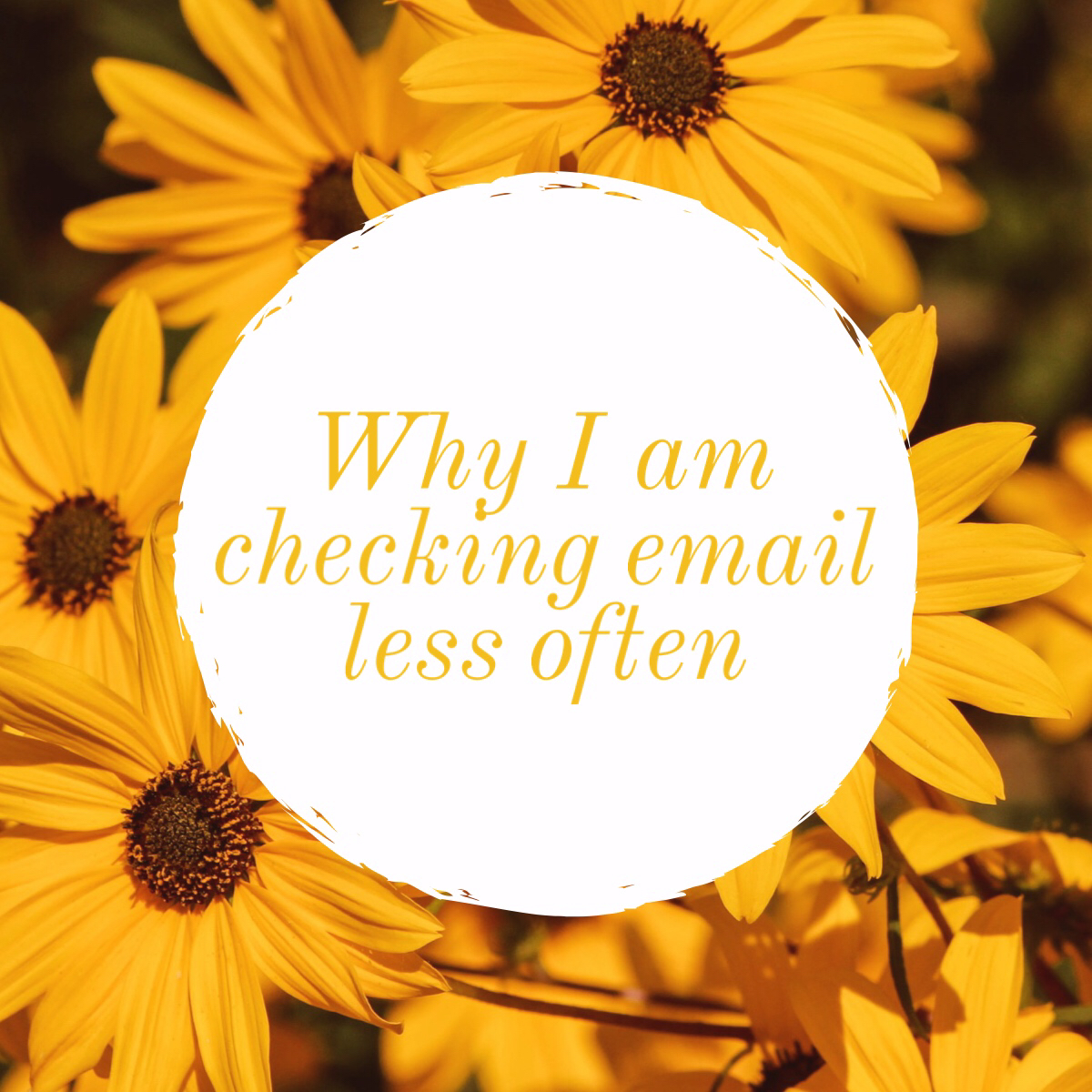 why-I-am-checking-emails-less-often