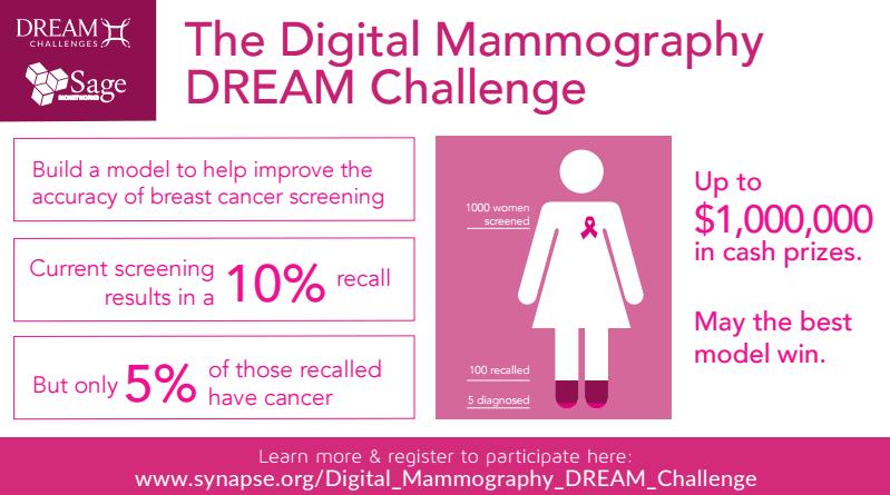 DM Challenge Flier Image