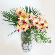 Fresh Cut Orchids- Medium