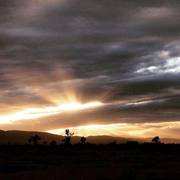 Desert Moments