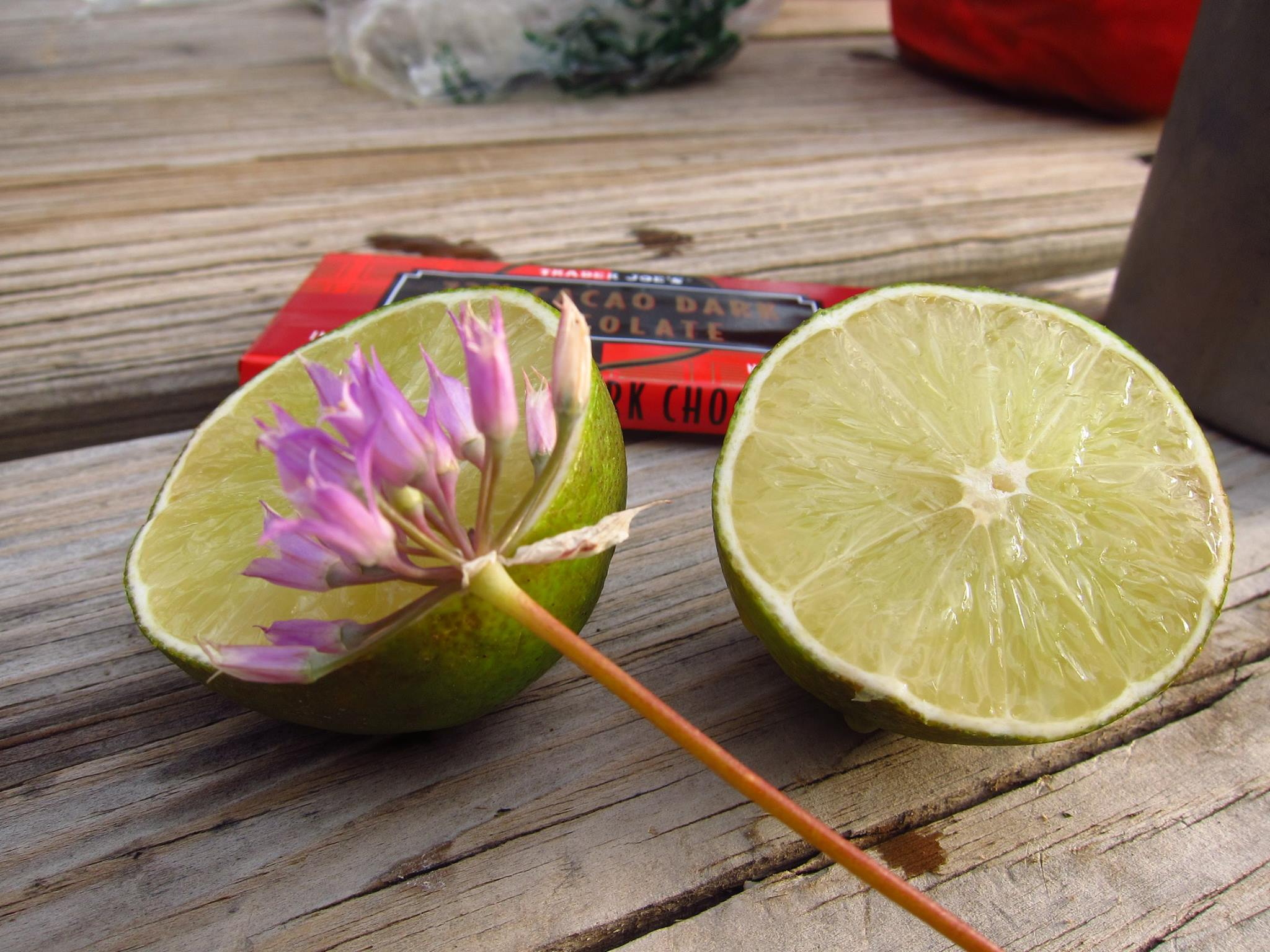 limes and wild onions