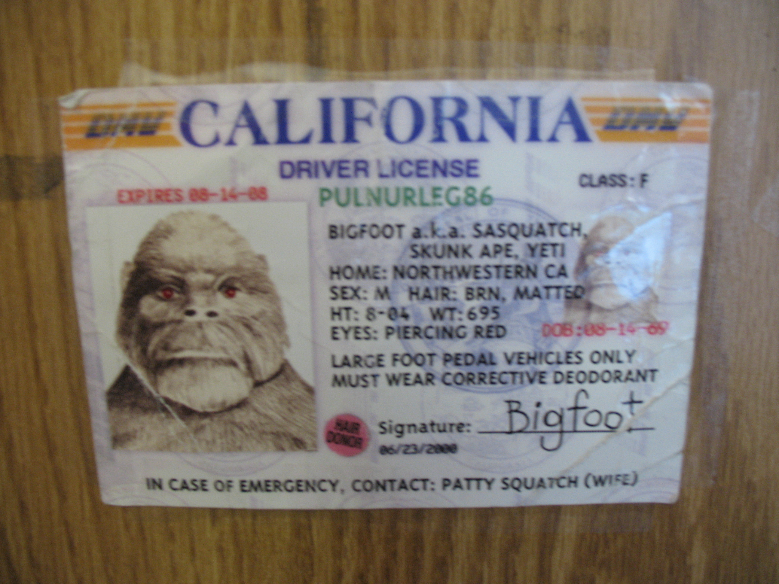 Bigfoot's Drivers Licence