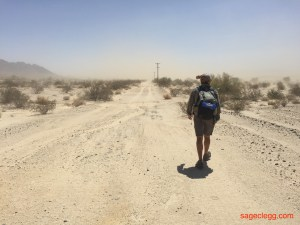 Windy Mojave