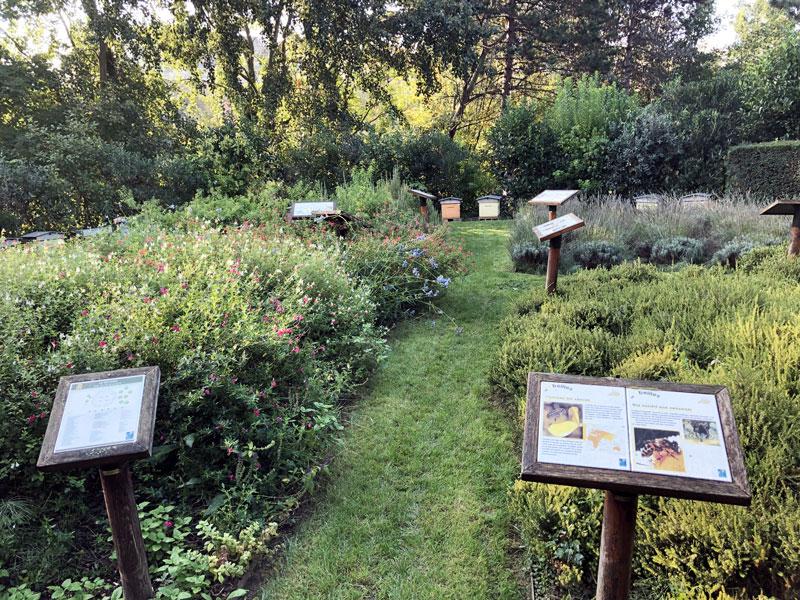 Le rucher de Levallois