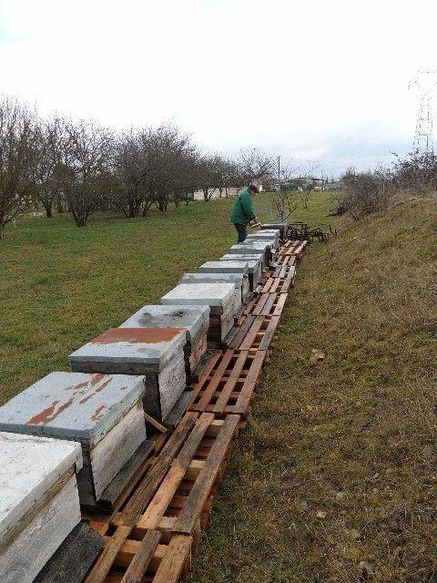 préparation des ruchers