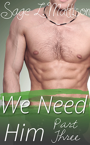 We Need Him Part 3 by Sage L Mattison