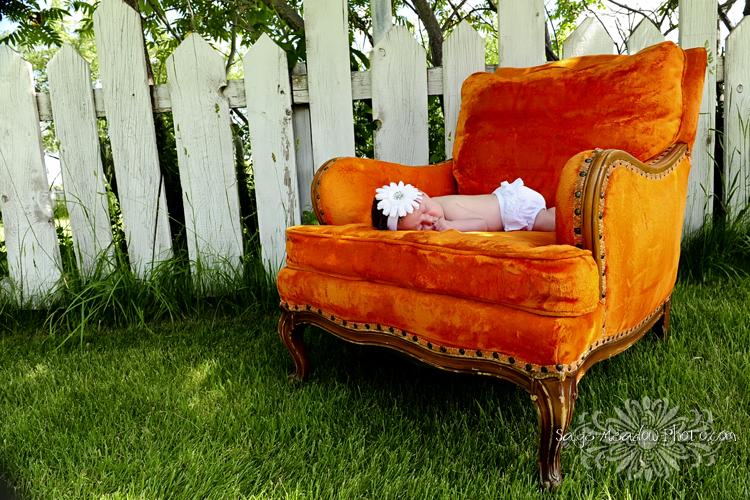 Kaymn Orange Chair