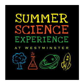 Summer Sciences-Logo | Sage River Graphics