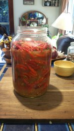 Week seven. Only room for one more addition of peppers then it's off to ferment for the winter