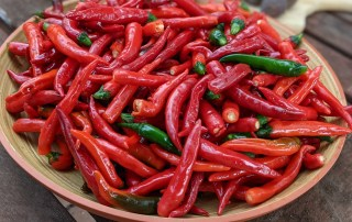 Cayenne/Thai hot peppers for fermented hot sauce