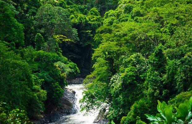 PhotoOfTheDay: Kwa Falls, Cross River State