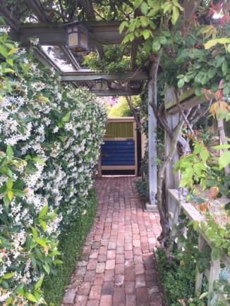 The fragrant walkway to the cottage