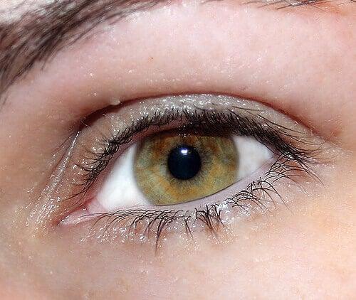 eye-neuroticcamel1