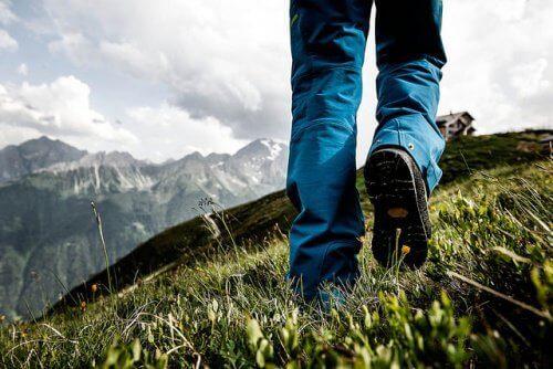 doğada yürüyüş