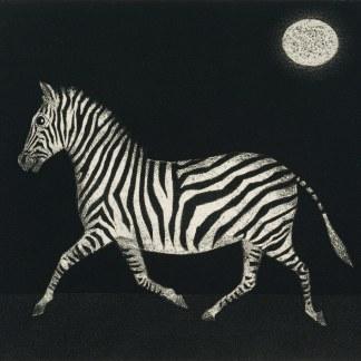 Mario Avati - Zèbre au clair de lune