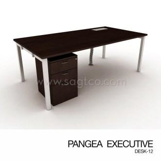 PANGEA EXECUTIVE DESK-12--OFD-EX-088