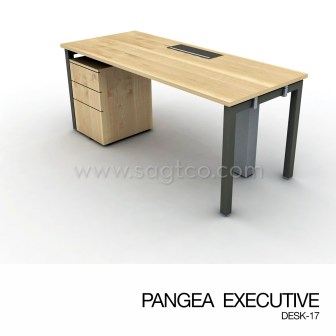 PANGEA EXECUTIVE DESK-17--OFD-EX-093