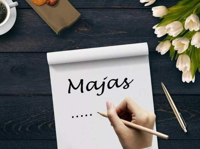 Majas merupakan gaya bahasa yang bersifat imajinatif dan ekspresif MAJAS METAFORA : Pengertian, Jenis Jenis, Contoh (Lengkap)