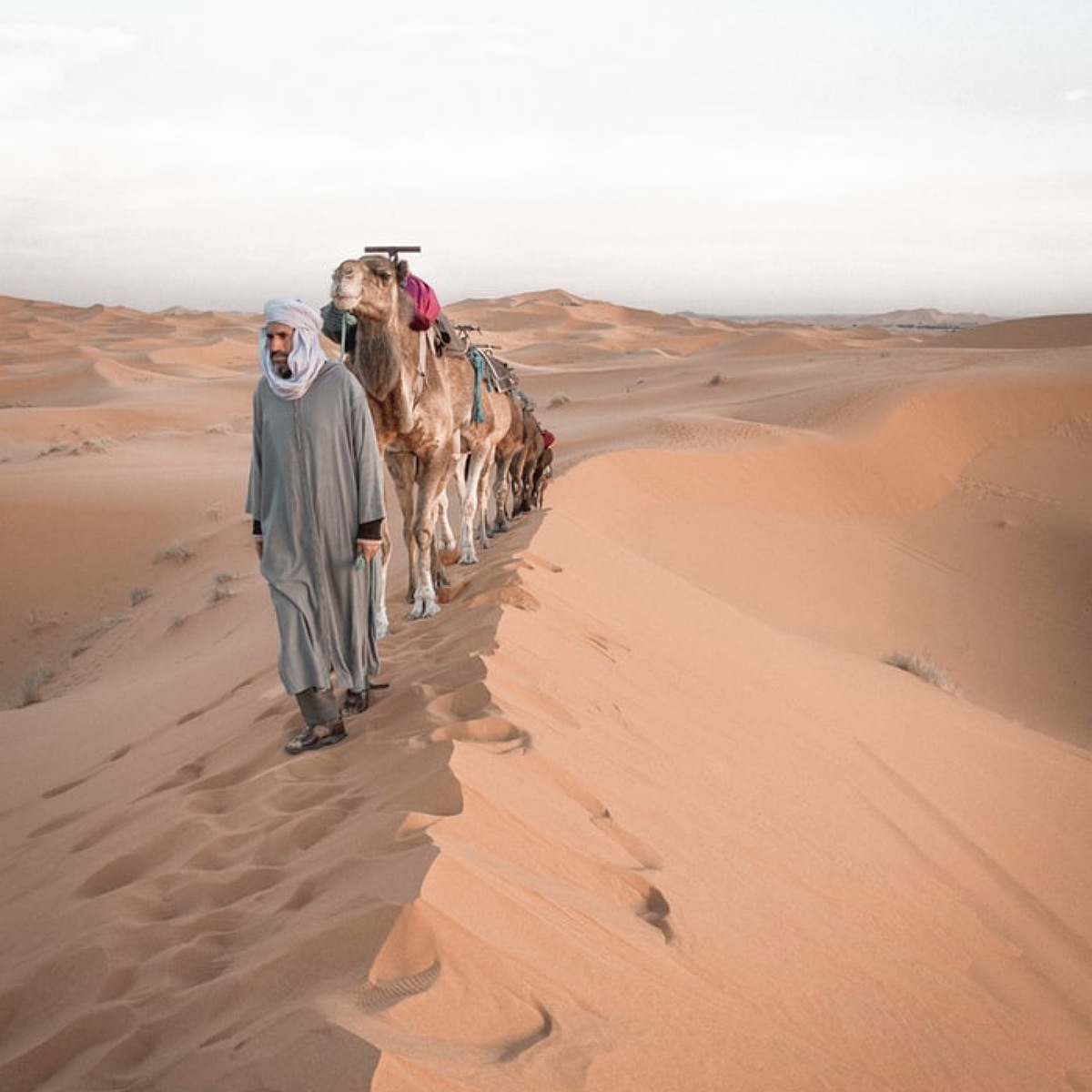 2 nights camel trip in sahara desert morocco
