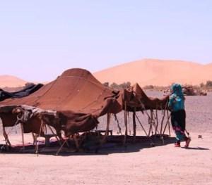 6 days sahara desert trip from Marrakech