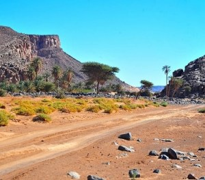 6 days 5 night Morocco trip from Marrakech