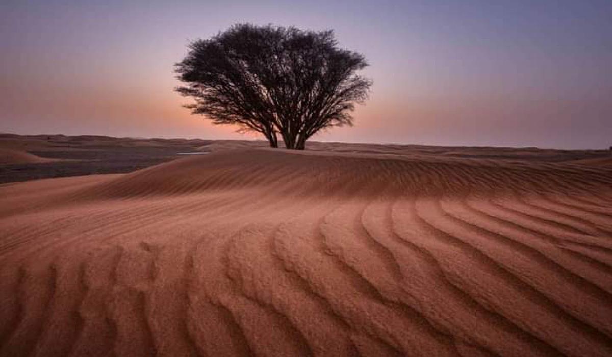3 Nights Merzouga desert tour