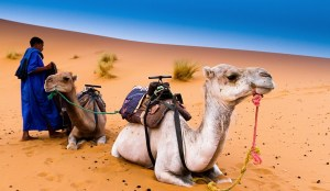 10 days Morocco itinerary from Casablanca