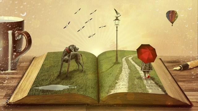 FANTASY OPEN BOOK PICTURE