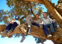 Us in a tree