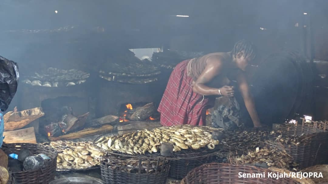 Teju's mother, Mrs Azankpo processes the fish for sale.