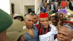 Image result for Coalition of Northern groups takes IPOB agitation to U.N.
