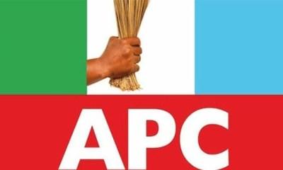 Anti-Party Tendencies - APC accuses Nnamani