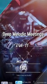 FSD - Deep Melodic Meetings Vol. 11