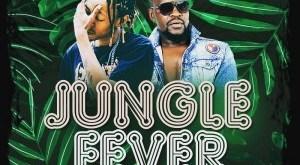 Batondy ft Mellow Don Piccaso - Jungle Fever