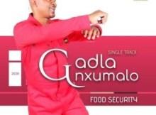 Gadla Nxumalo - Food Security