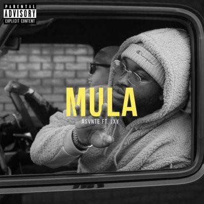 Asvnte ft JXY - Mula