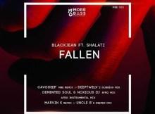 BlackJean ft Shalati - Fallen (Demented Soul & Noxious DJ Afro Mix)