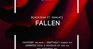 BlackJean ft Shalati - Fallen (Demented Soul & Noxious DJ Afro Mix)