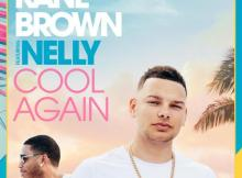 Brown ft Nelly - Cool Again Kane