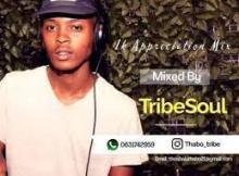 Tribe Soul - Soul Healer