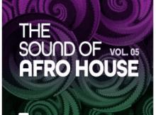 Afro Exotiq - Woza (Nitefreak Remix)