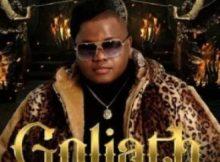 Dladla Mshunqisi ft DJ Tira, Busiswa & Dlala Thukzin - Goliath