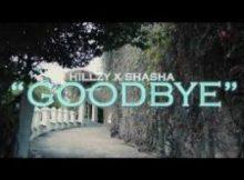 Hillzy & Sha Sha - Goodbye