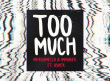 Marshmello & Imanbek ft Usher - Too Much
