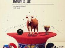 Phila Madlingozi ft Sphe - Igaqa Le Ice