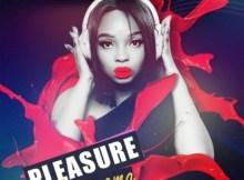 Pleasure ft Zipho Thusi - Ngonyama